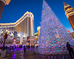 Las Vegas Christmas Lights Tour